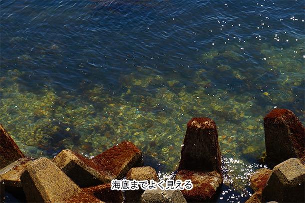 知多半島の海