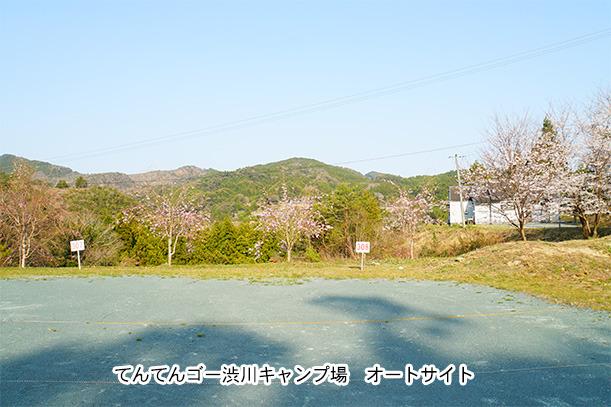 てんてんゴー渋川キャンプ場