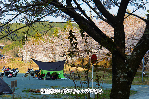 てんてんゴー渋川キャンプ場 バイク