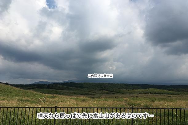 富士山が見えない@ふもとっぱら周辺