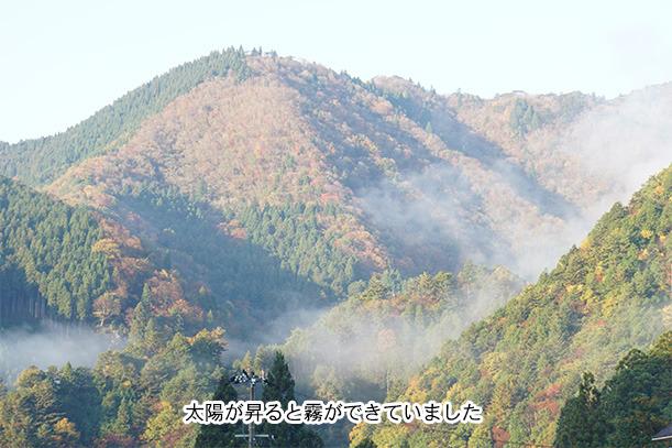 山に霧がかかっていました