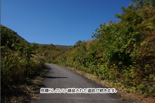 26-5新潟県県道59の紅葉