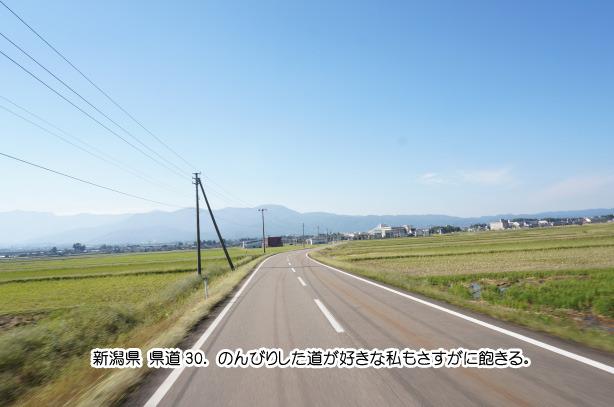 26-9新潟県の道