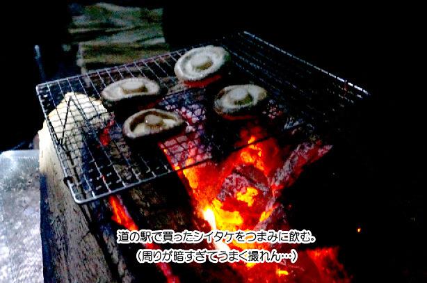 27-22椎茸ファイヤー