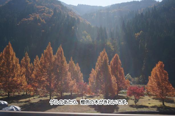 28-4九頭竜湖の紅葉
