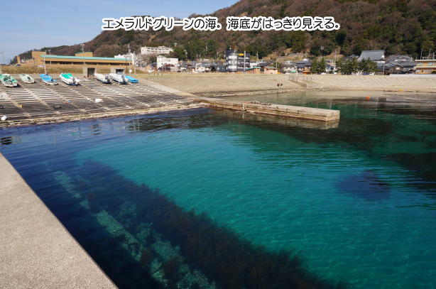 34-13エメラルドグリーンの日本海