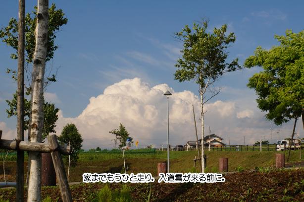 ひるがの高原SA.jpg