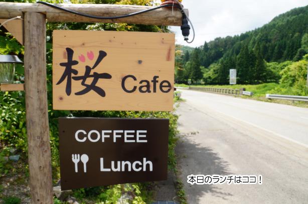 カフェ 桜.jpg