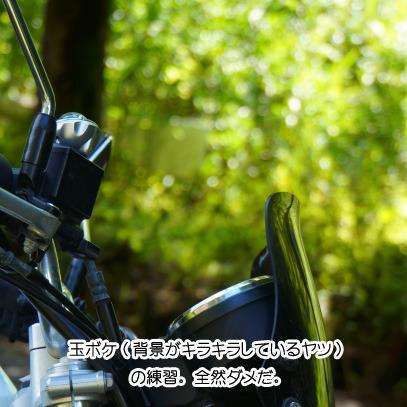 岐阜県 県道40.jpg
