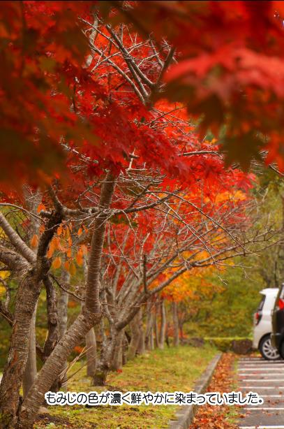 おおくら滝周辺の紅葉