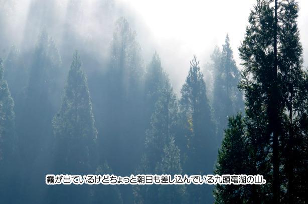 九頭竜湖の紅葉 62-1