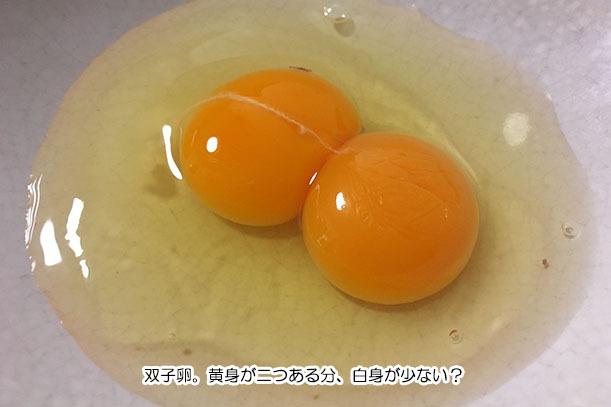 黄身2つ卵