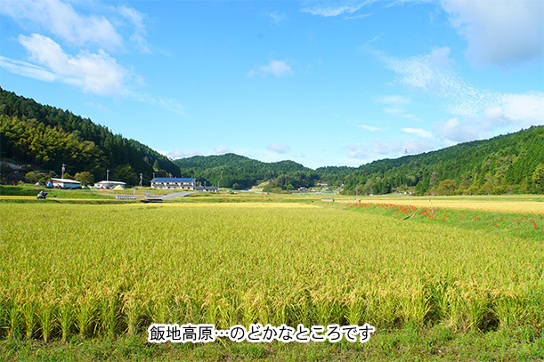 飯地高原キャンプ場