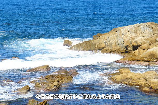 越前海岸の日本海