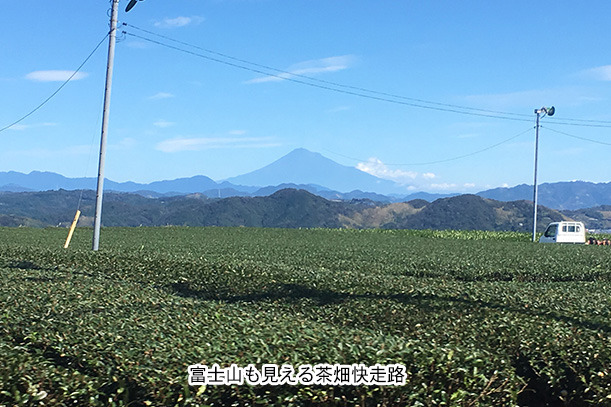 茶畑を通る快走路
