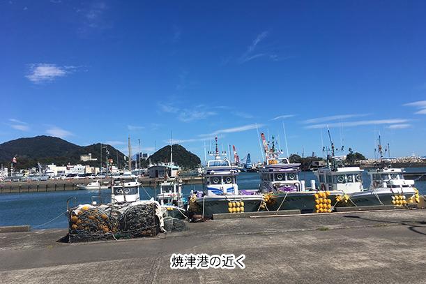 焼津漁港の近く
