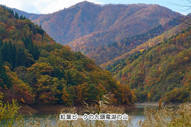 秋の九頭竜湖