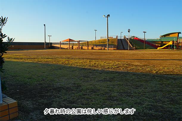 波の華 公園