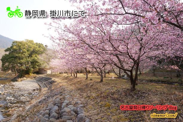 名古屋発日帰りツーリングBlog表紙37/新目もり