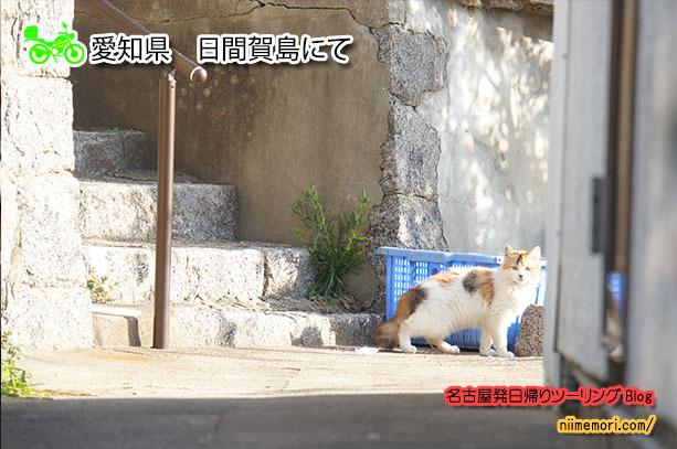 名古屋発日帰りツーリングBlog表紙69