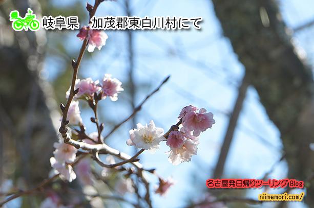 名古屋発日帰りツーリングBlog表紙94